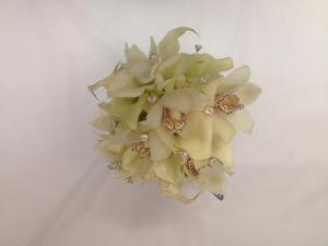 Belak white orchids