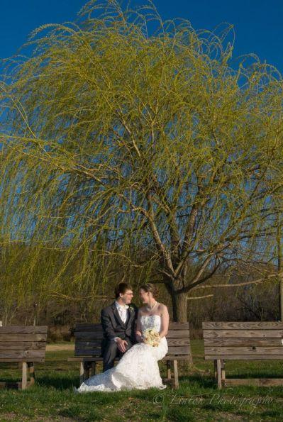 Linton red barn wedding the tree