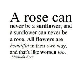 A rose is not a sunflower