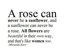 A rose is not a sunflower