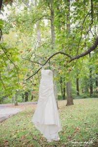 Hagley wedding fairytale dress in tree