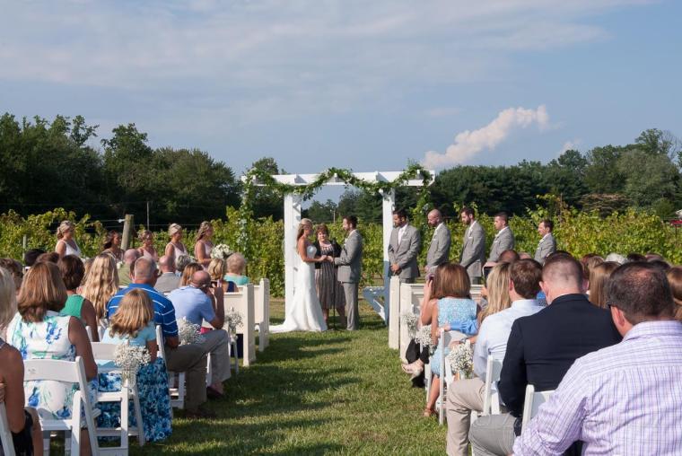 Linton Vineyard ceremony