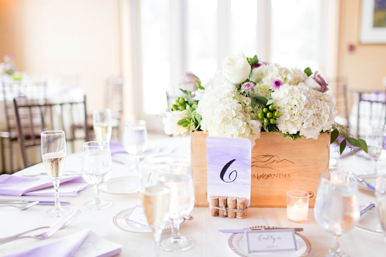 Greaney_Herrman_Anna_Grace_Photography_7HerrmanWeddingReception907