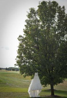kerry-harrison-wild-quail-dress-in-tree