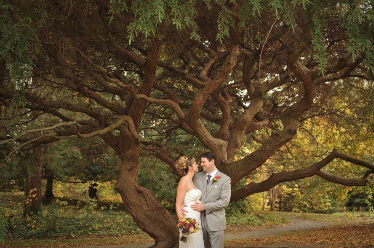 kerry-harrison-fall-rockwood-the-tree